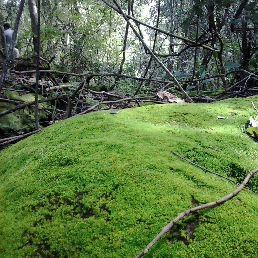 Açude Caldeirão - Piripiri, Piauí, Brasil