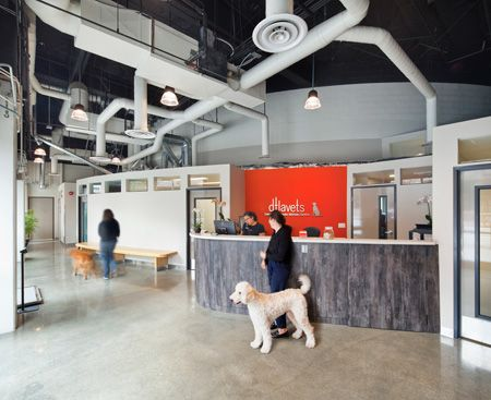 Veterinary Hospital Reception Area Veterinary Hospital