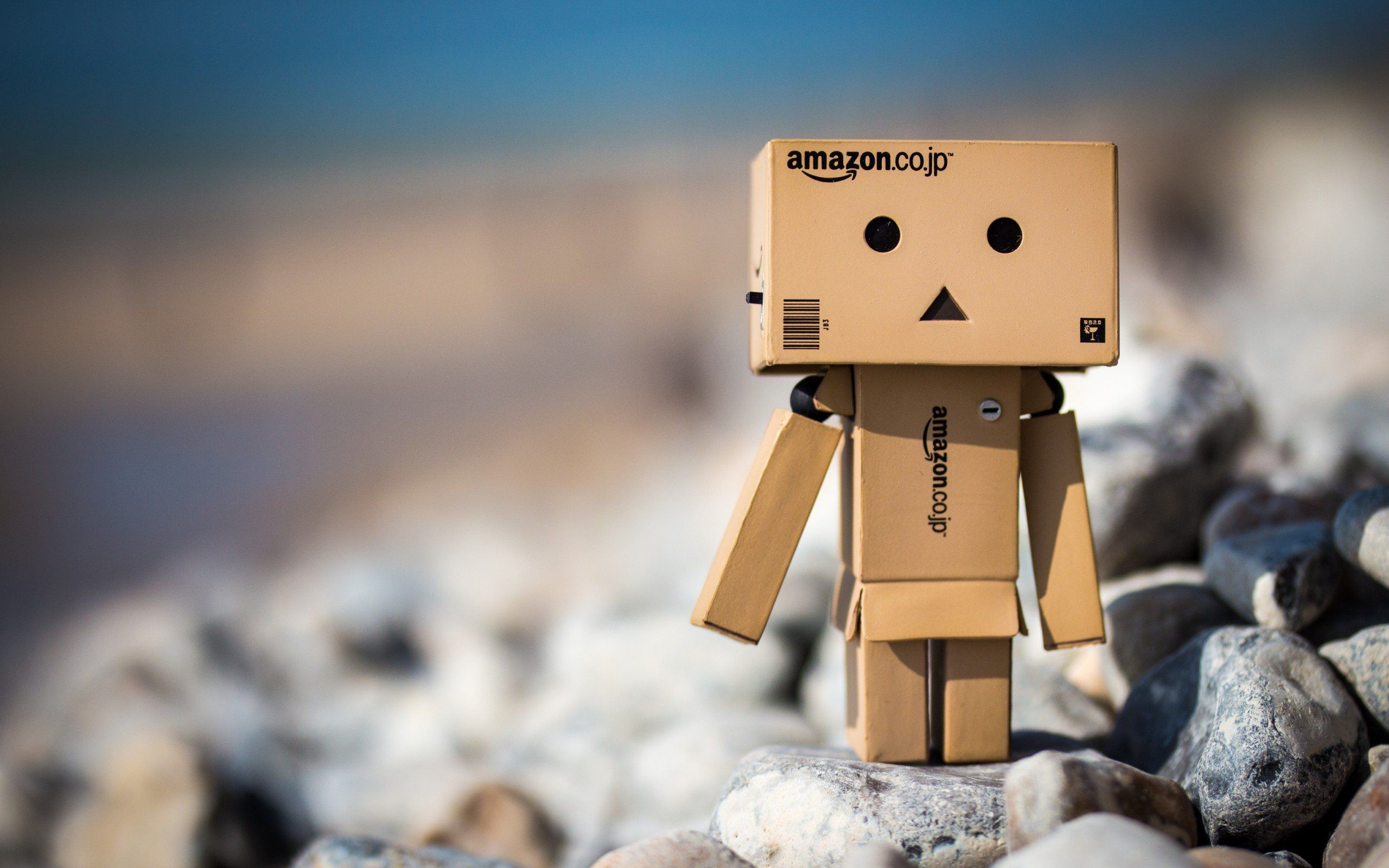 Cute Amazon Box Robot Box Man Robot Amazon Wallpaper Background Danbo Amazon Wallpaper Wallpaper
