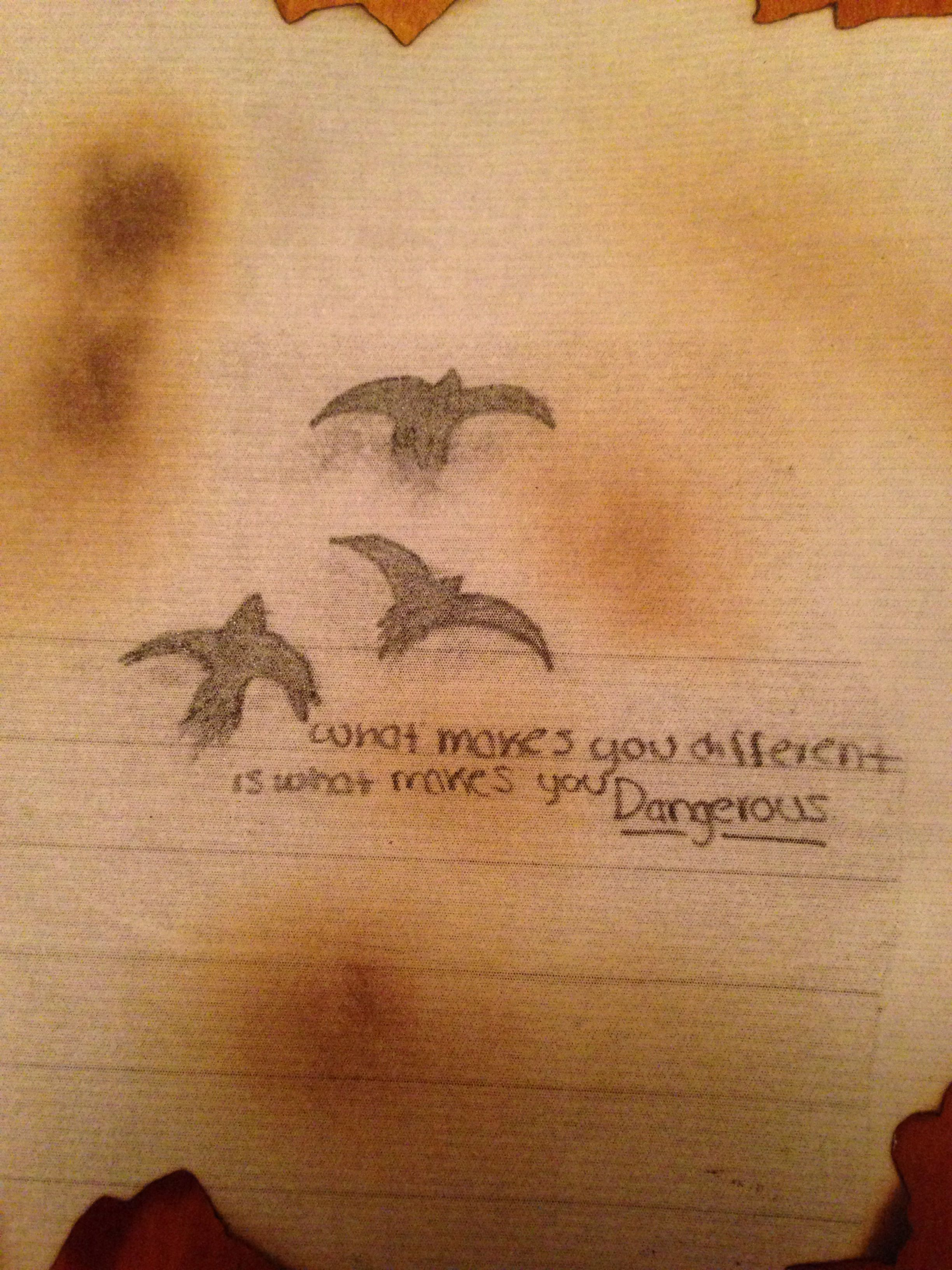James Potter Libros Divergent Fan Art My Drawing Of The Ravens I Divergent