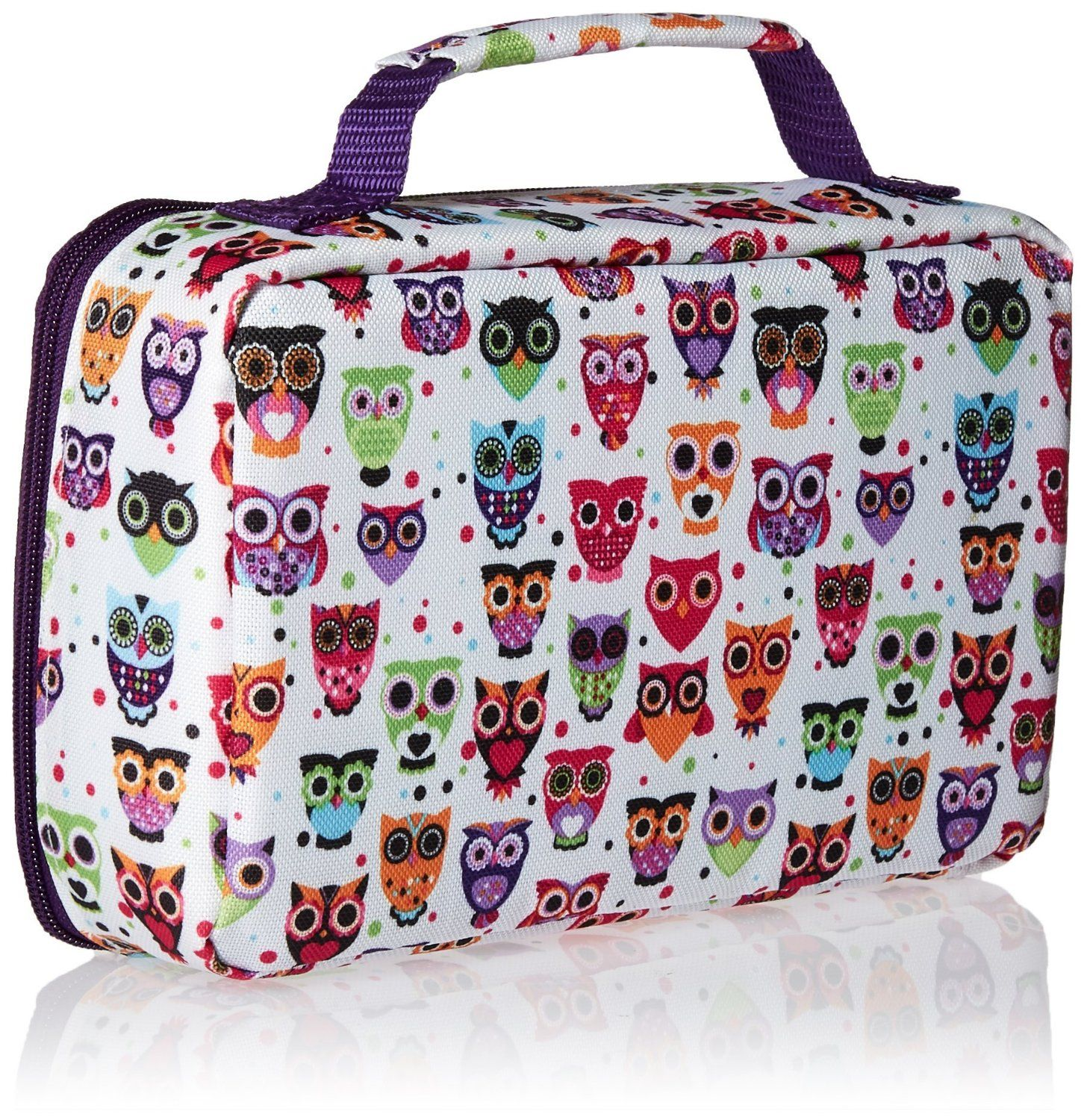 Amazon.com: Fit & Fresh Kids Bento Lunch Kit with Insulated Bag and Ice Packs, Woodstock: Kitchen & Dining