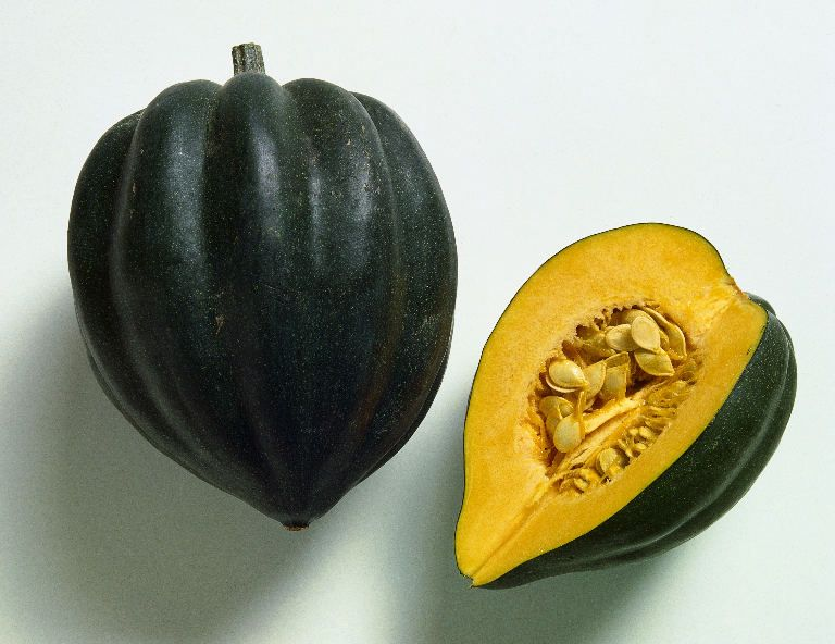 Acorn Squash Contains A Hint Of Calcium Which Is All The Bad Stuff