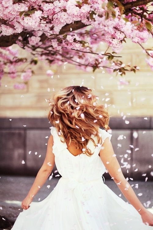 """""""""""shake the flowery tree branch & take a picture of the falling petals on the client"""""""""""