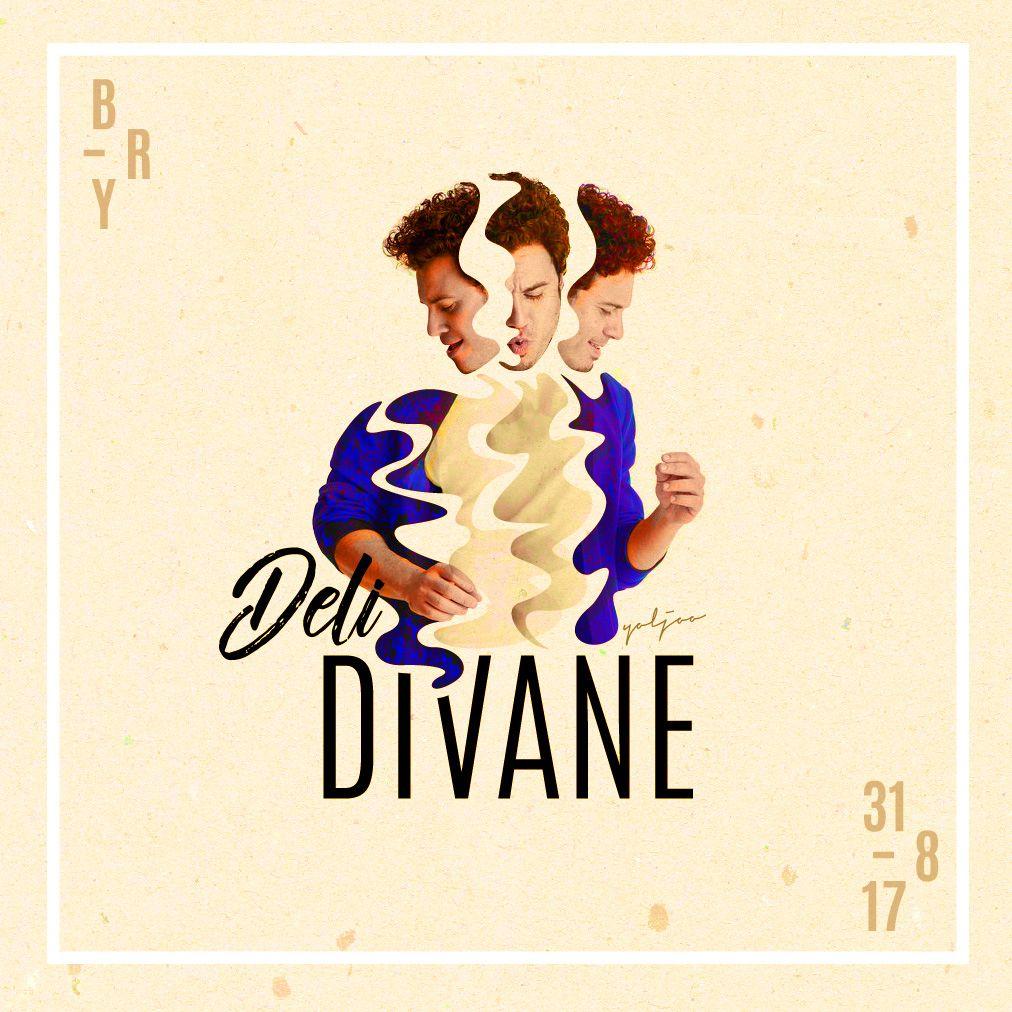 Art By Yoljoo Deli Divane Cover Design Cover Design Art Visual Design