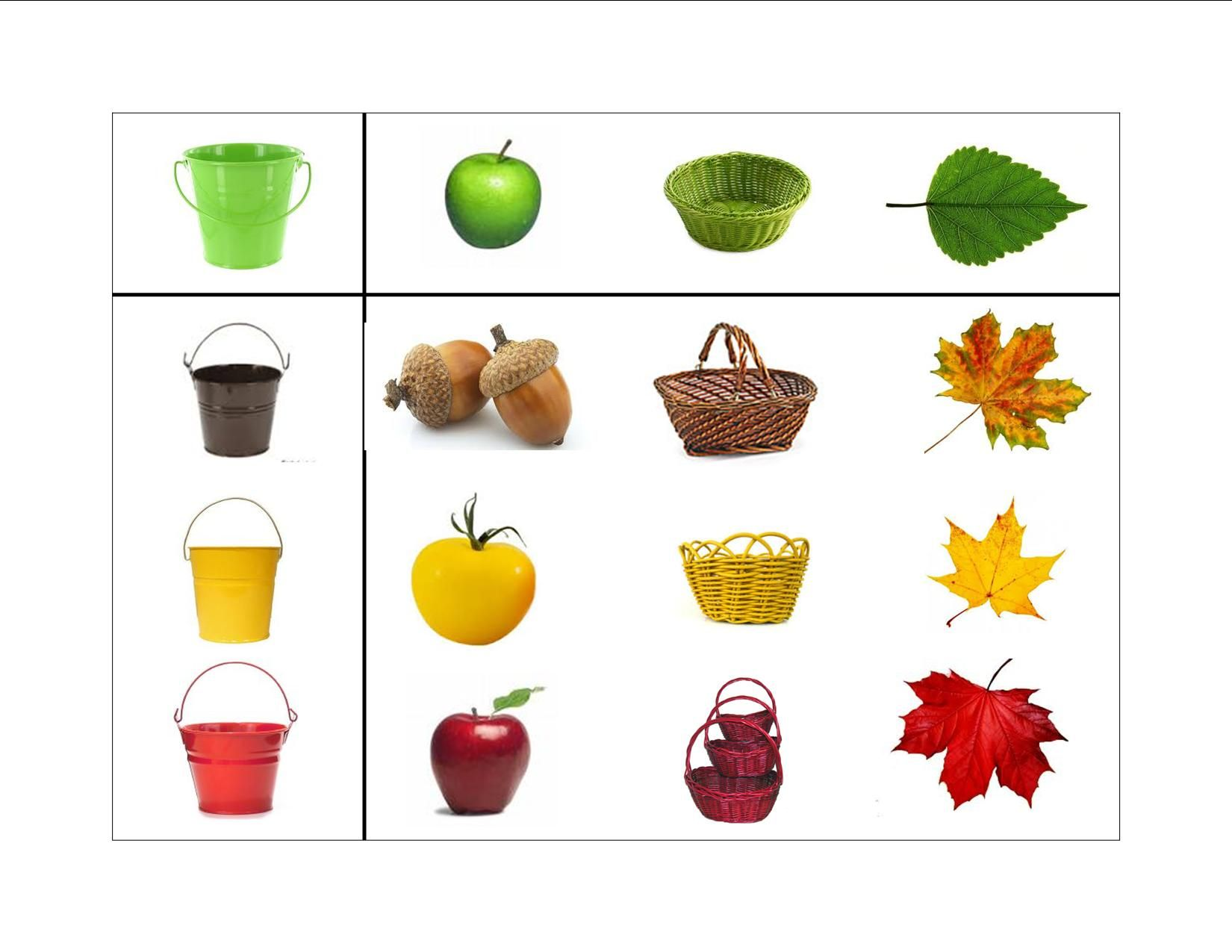 Color Shape Sorting 2