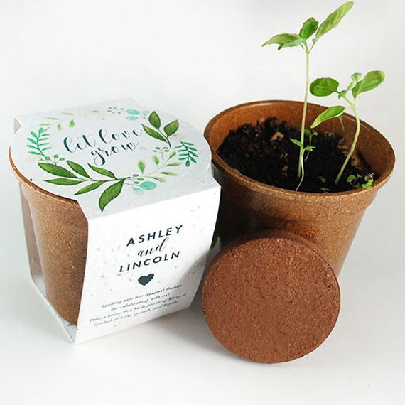 12 Fresh Herb Seed Paper Sprouter Kit Wedding Favors Seed