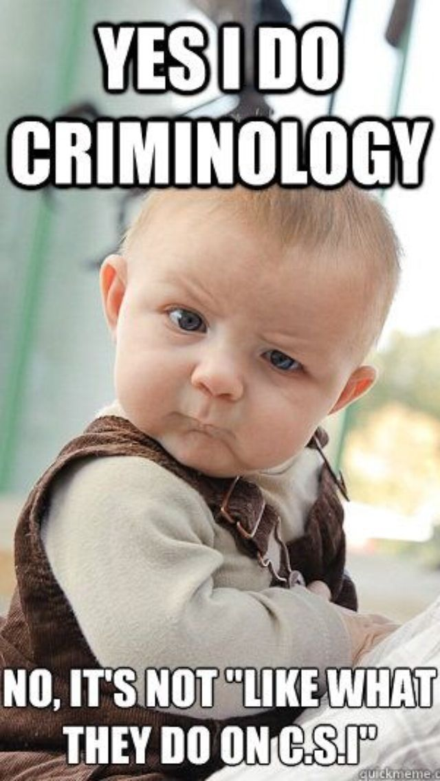 Whats the difference between criminology and criminal justice? as in the majors?