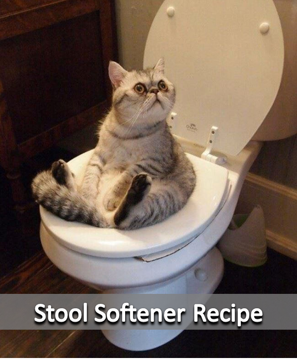 Stool Softener Recipe Funny cats, Funny animal pictures
