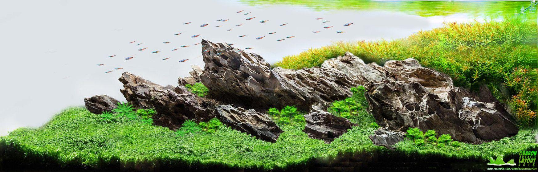 Ada Ohko Stone Aquascape Dragon Stone Aquascape Information Ohko Stone For Sale Dragon Stone For