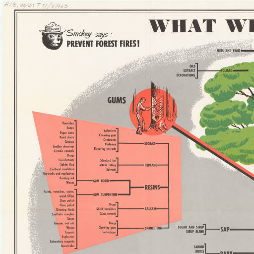 What we get from trees U.S. Government Posters Forest