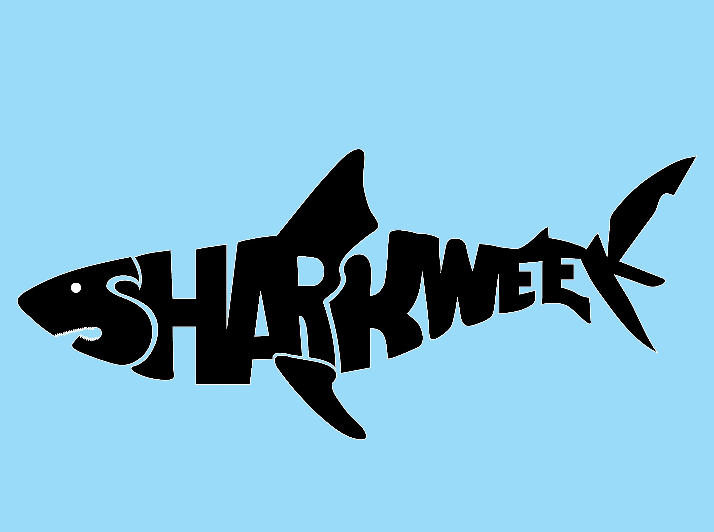25 best shark week ideas on pinterest shark week 2016 shark