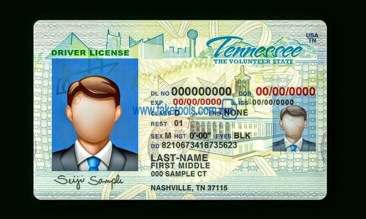 Driver licence id card template drivers license