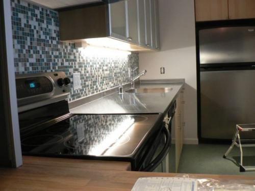 Elegant Ikea Kitchen Remodel Cost Lodge Design Ikea Kitchen Remodel Beauteous Cost Of Small Kitchen Remodel Painting