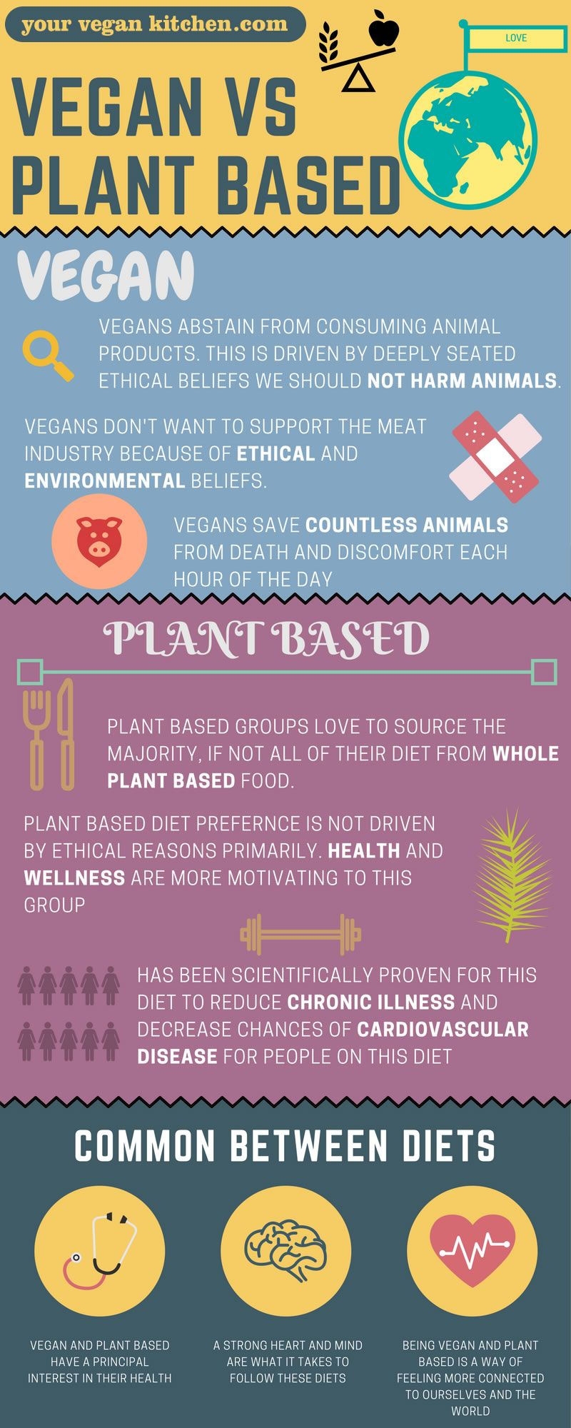 plant based diet vs vegan