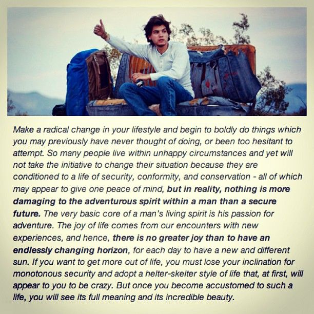 Into The Wild Book Quotes Gorgeous Into The Wild A Sad Dramatic True Story Everyone Should See