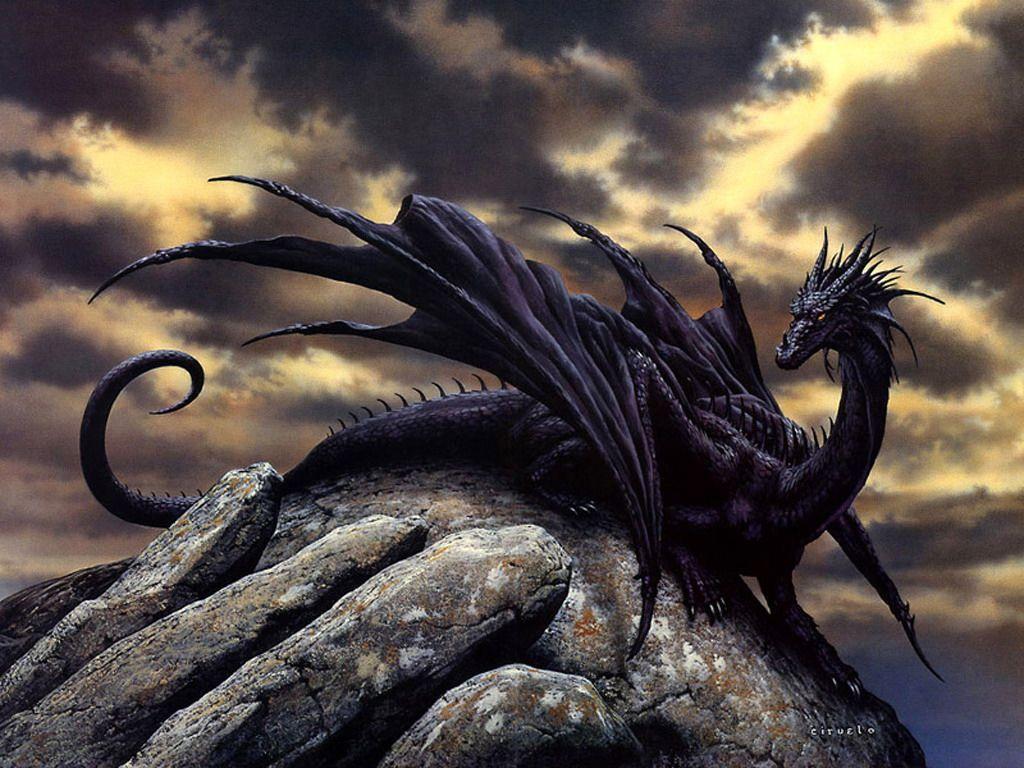 Chinese black dragon dress up