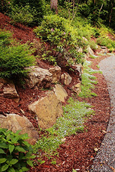 Landscape Landscape Design Ideas Outdoor Living Space Ideas Green Space Ideas North Carolina Landscape C Landscape Design Residential Landscaping Landscape