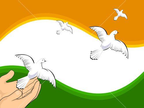 Vector Illustration Flying Pigeons On Indian Flag Colors