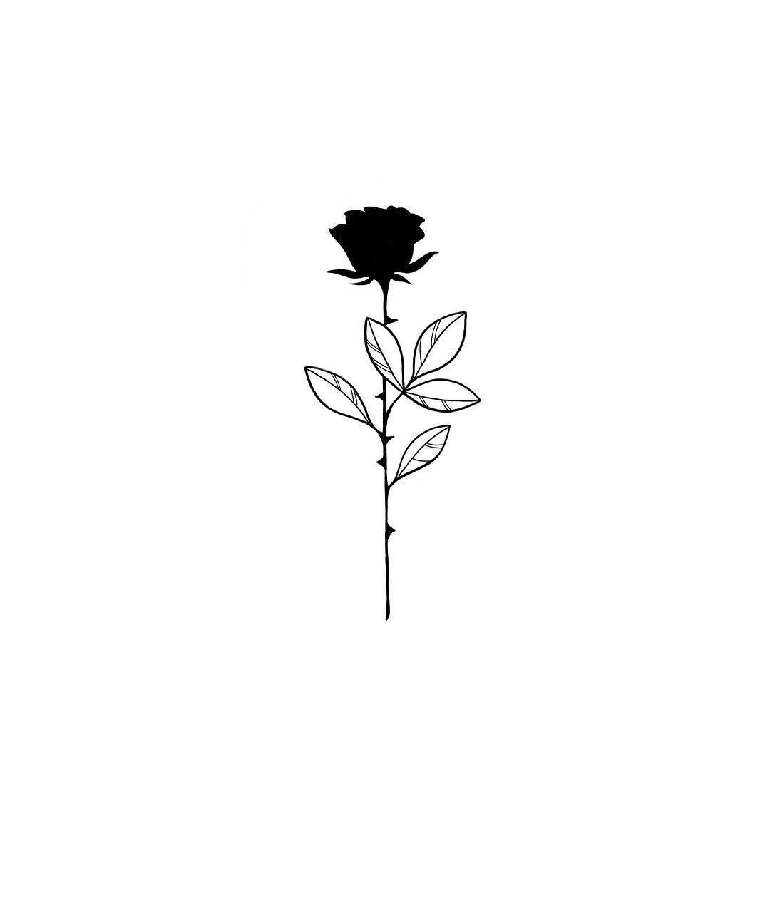 d37a5b33c75617de7f1a46d2a95d0fd0 » Aesthetic Rose Drawing