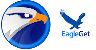 تحميل برنامج Eagleget للكمبيوتر و اخر اصدار 2021 برابط واحد مباشر Video Websites Web Browser Freeware