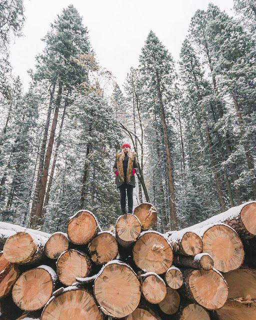 #Winterwonderland #snow
