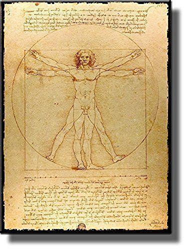 Leonardo Da Vinci\'s Vitruvian Man Picture on Stretched Canvas, Wall ...