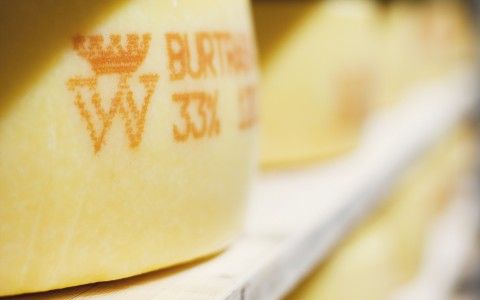 a guide to Scandinavian cheeses, from the Scandikitchen blog, in English