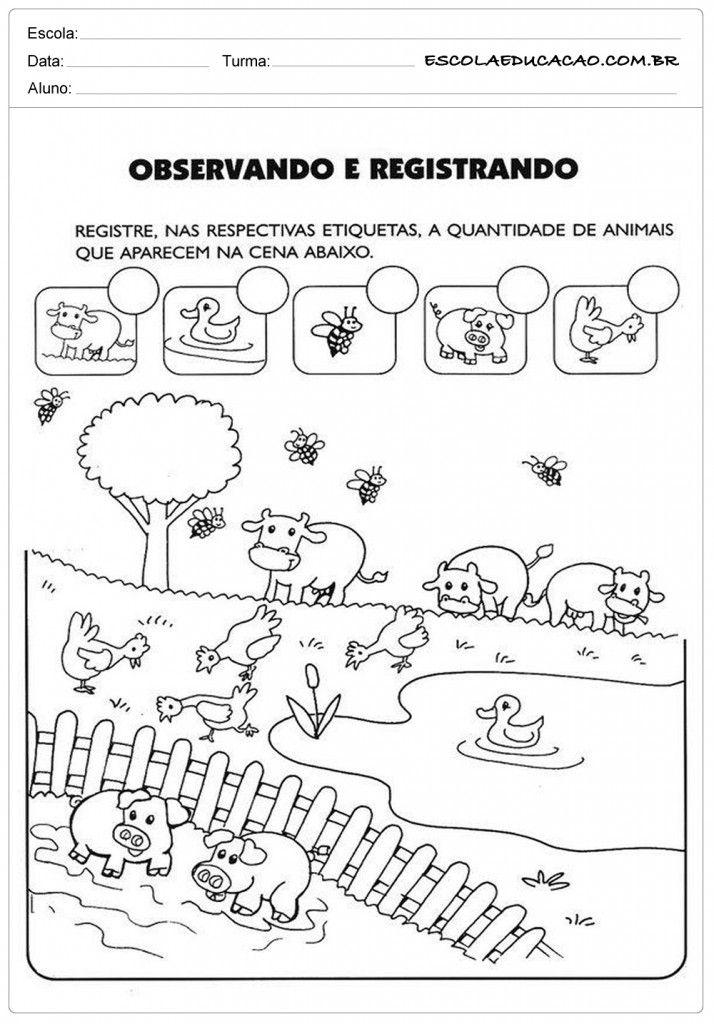 Atividades com Animais - Observe   Conocer   Pinterest   Worksheets ...