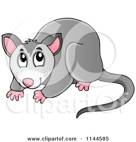 Opossum Stock Illustrations – 493 Opossum Stock Illustrations, Vectors &  Clipart - Dreamstime