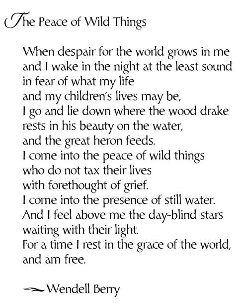 Poetic Peace