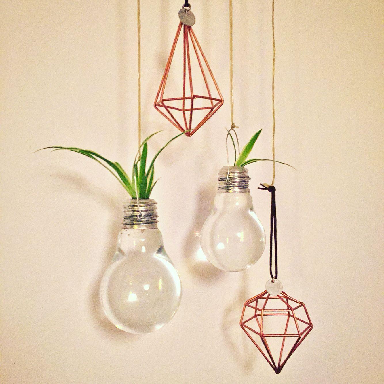 Edison Lamp Xenos Interesting Instagram With Edison Lamp Xenos