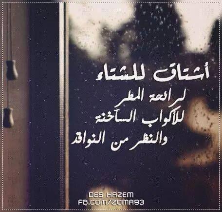 كلام عن المطر مميز وجديد صورة تغطية لايف نيوز Quotes About Photography Cover Photo Quotes Funny Arabic Quotes