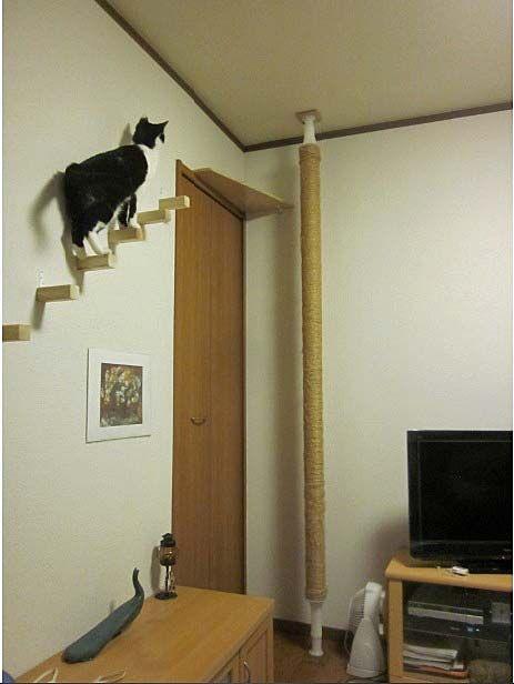 手作りキャットタワー キャットポール と猫階段 キャットタワー キャットタワー 手作り 猫の家具