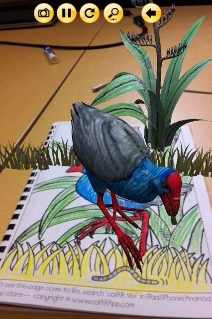 Pukeko Comes To Life Quiver Ar Screenshots Pinterest Quiver