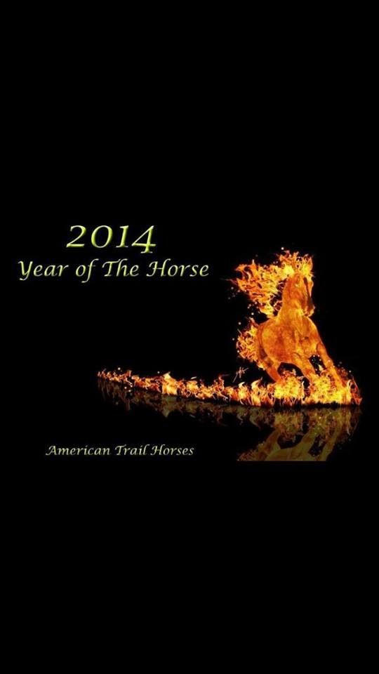 I'm ready for the year of the horse!