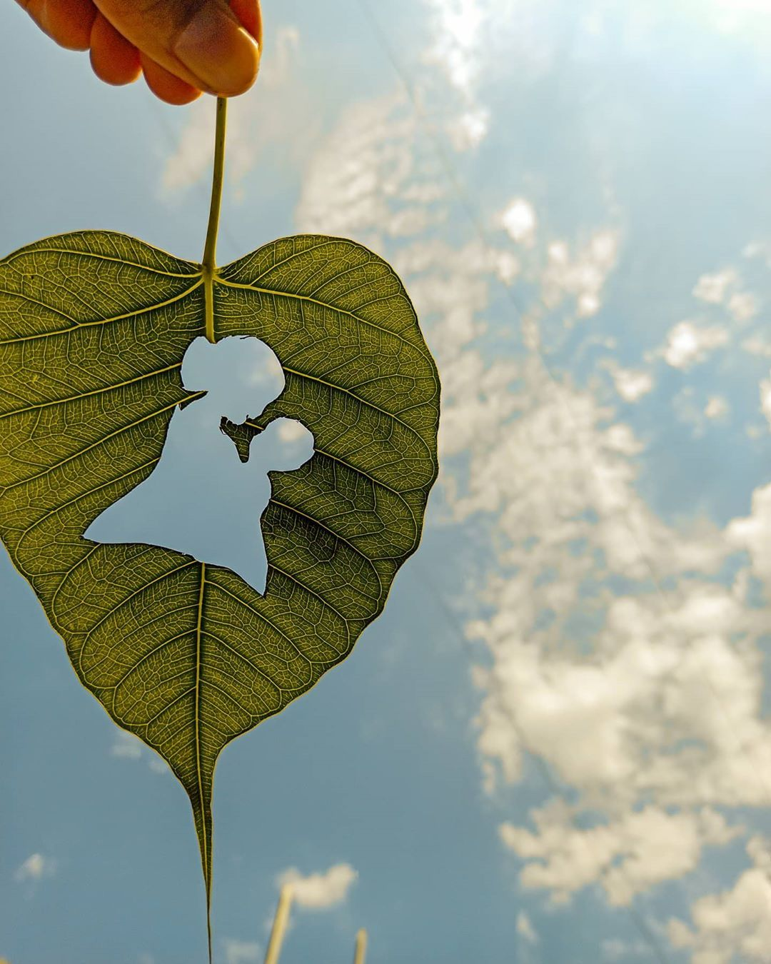 "ᴰⁱᵍⁱᵗᵃˡ ᵃʳᵗⁱˢᵗ on Instagram: "". 》》》》 ।। मां ।। 》》》》 . . . . #mom #mummy #ma #leaf #nature #green #sun #light #Bayern #reflections#Worldbestgram #photographers_of_india…"""