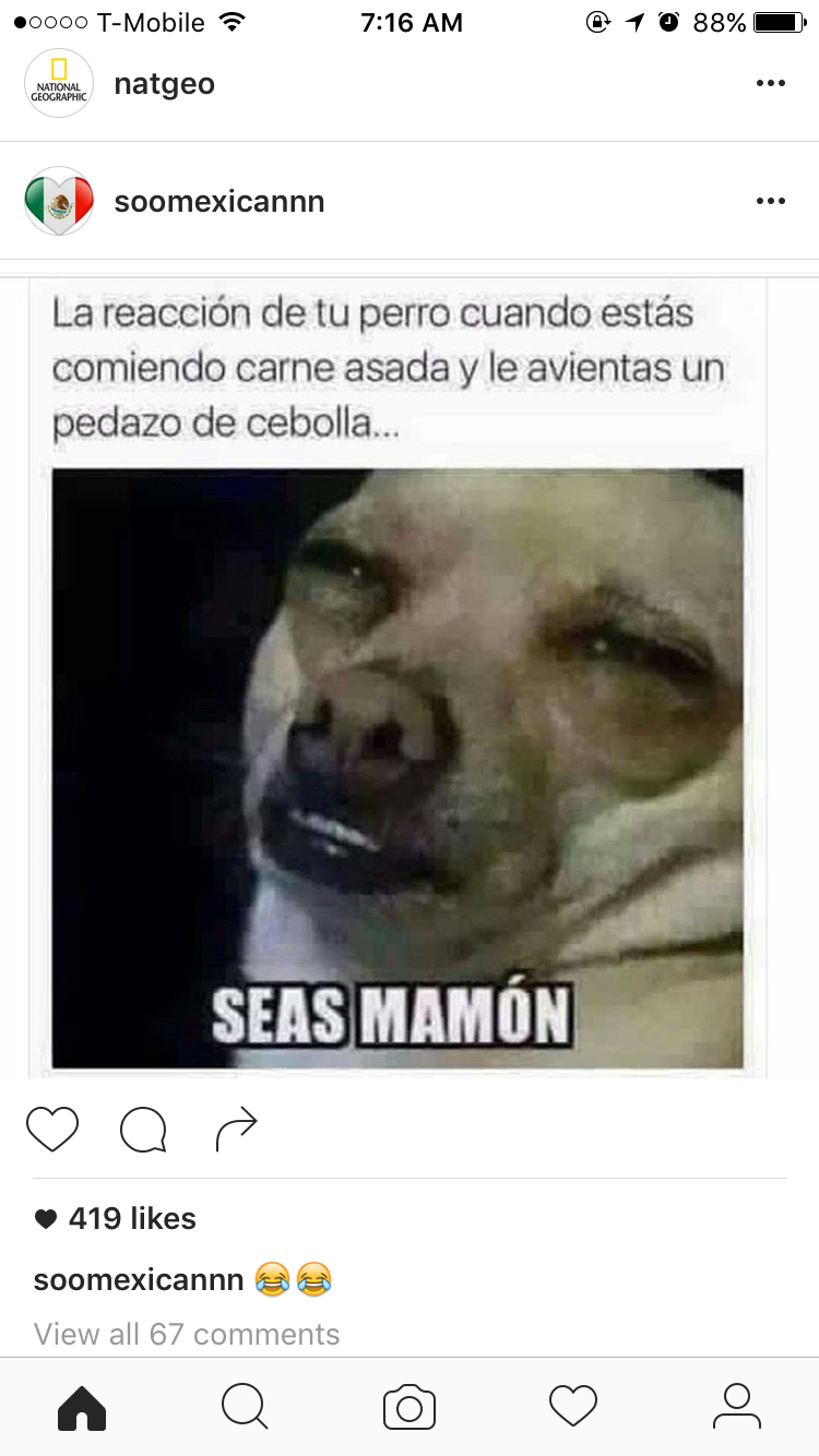 Pin By Laura De La Garza On Funny Memes Funny Memes Roblox Memes