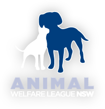 Dr Joanne Righetti Is An Ambassador For Animal Welfare League Nsw