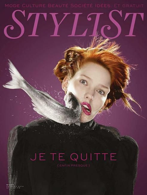 Stylist (France)