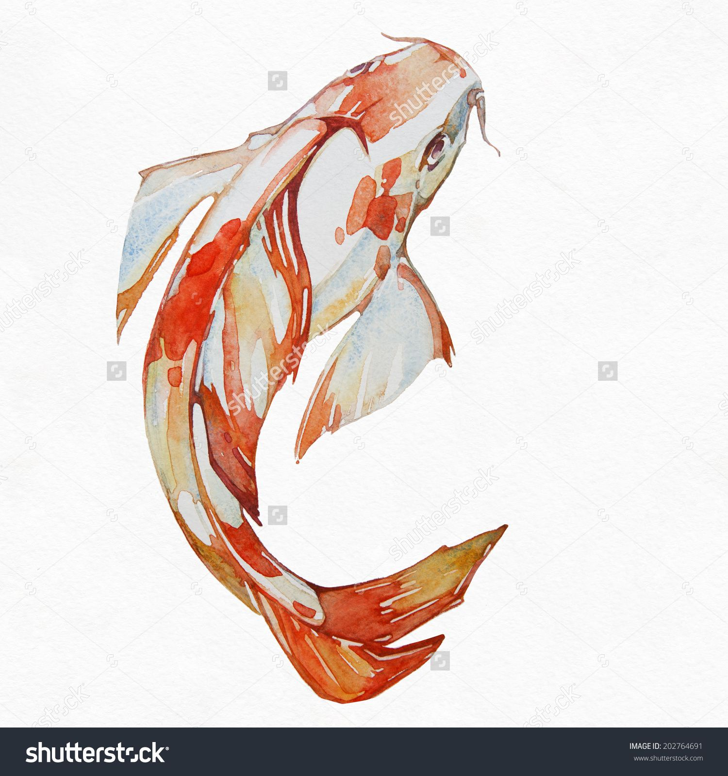 Resultado de imagen de koi fish watercolor koi fish for Koi goldfisch
