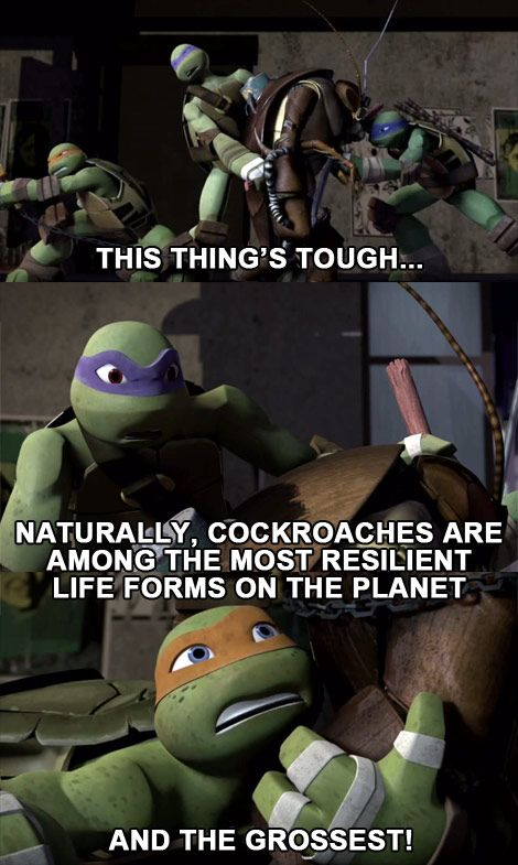 The Grossest! #tmnt #mikey #donnie #leo | TMNT