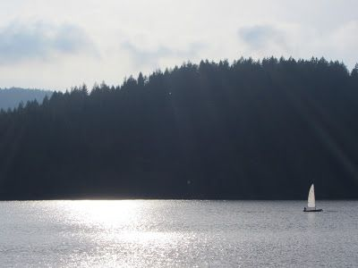 Schluchsee - in the Black Forest of Germany