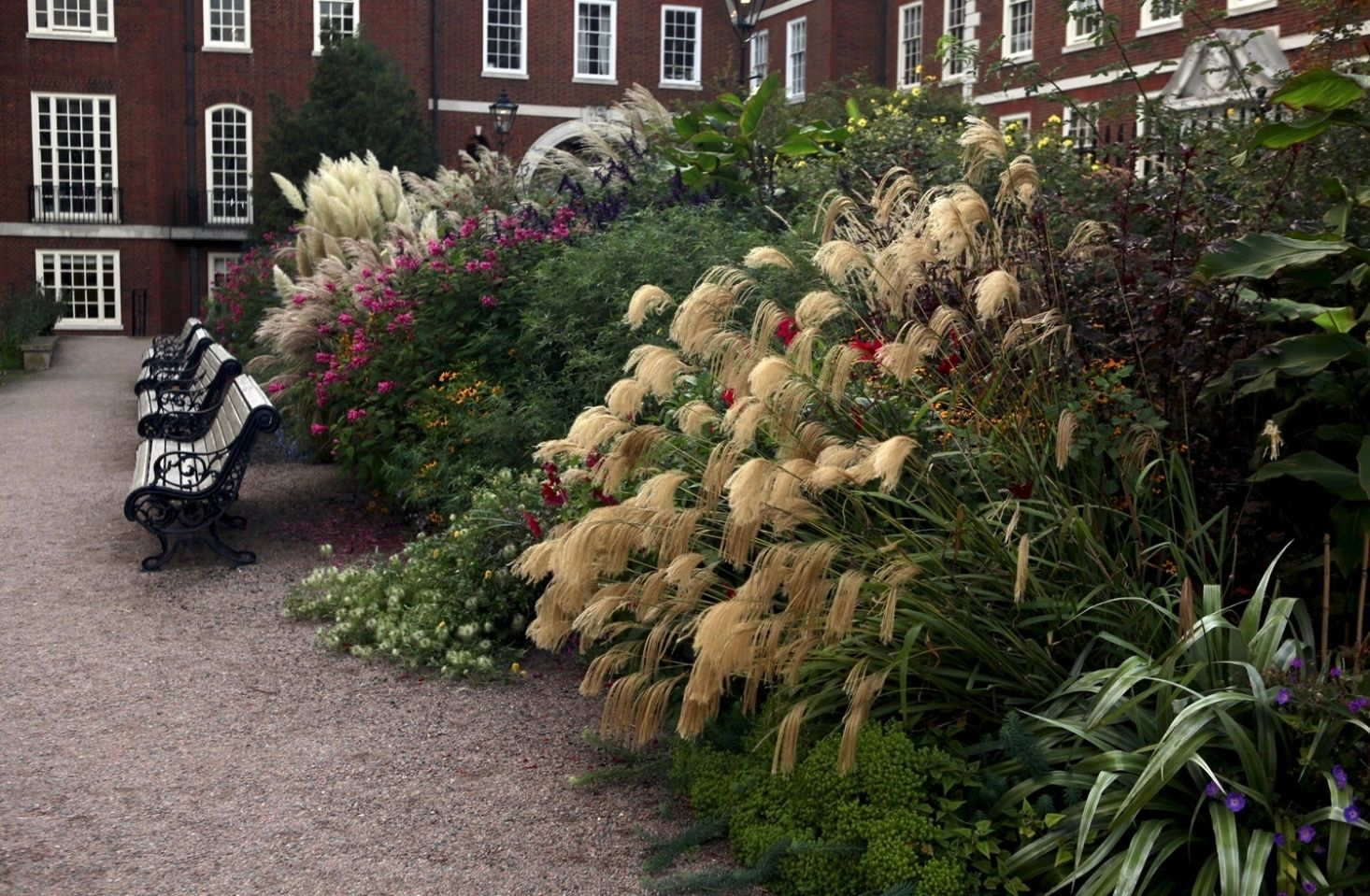 Almost Private: A Secret River Garden in Central London | Clematis ...