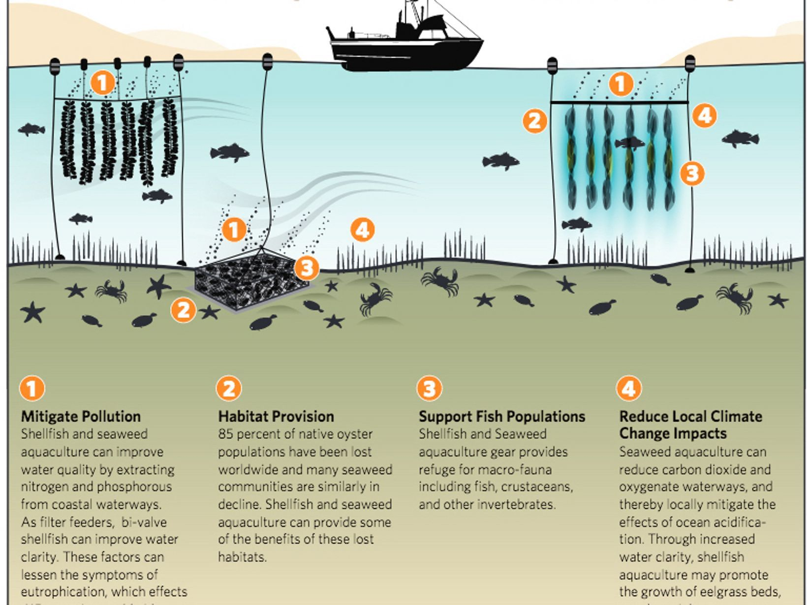 Ecosystems Benefits Of Aquaculture Infographic Aquaculture Farming Technology Fish Ponds