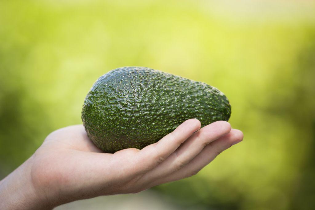 s-chem-edyat-avocado