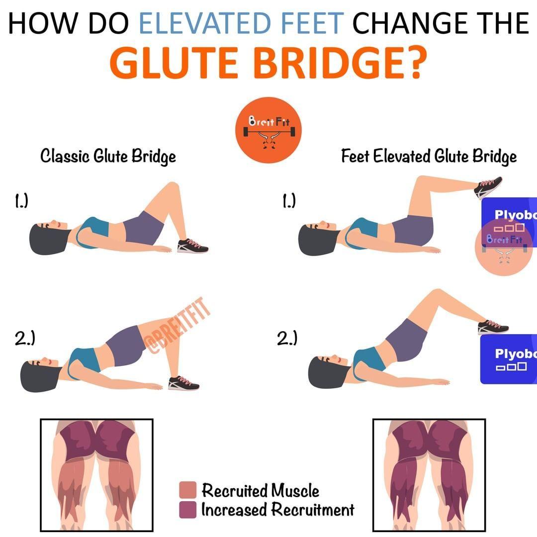 38+ How to do hip bridges ideas