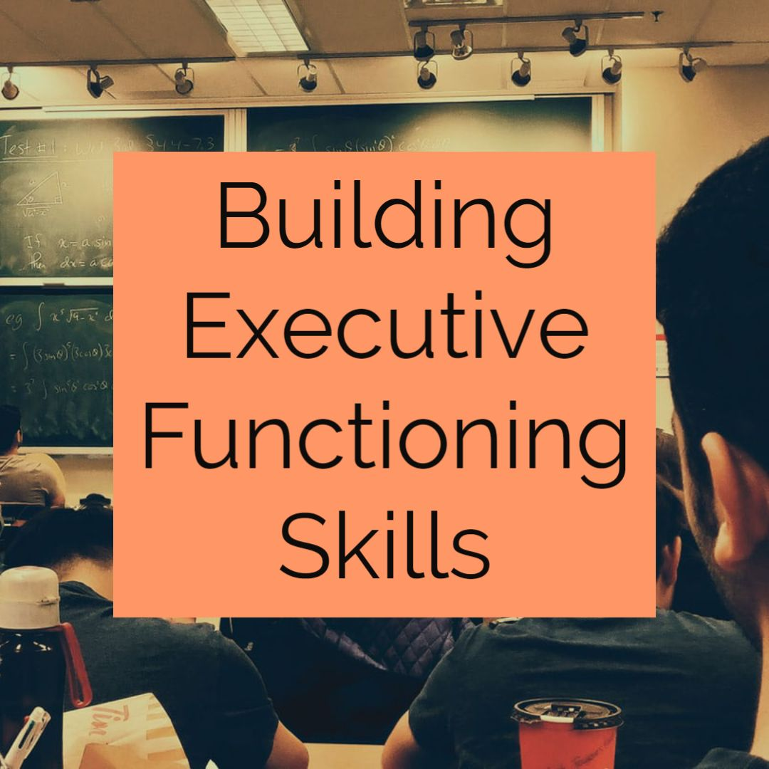 Building Executive Functioning Skills in 2020 Executive