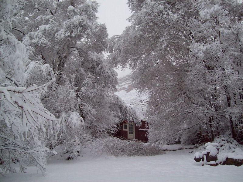Colorado winter scene from i live for Colorado cabin winter