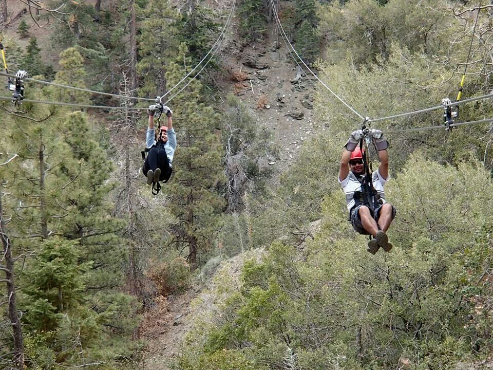 Zipline Canopy Tours In Wrightwood CA Operated By Big Pine Ziplines Formerly