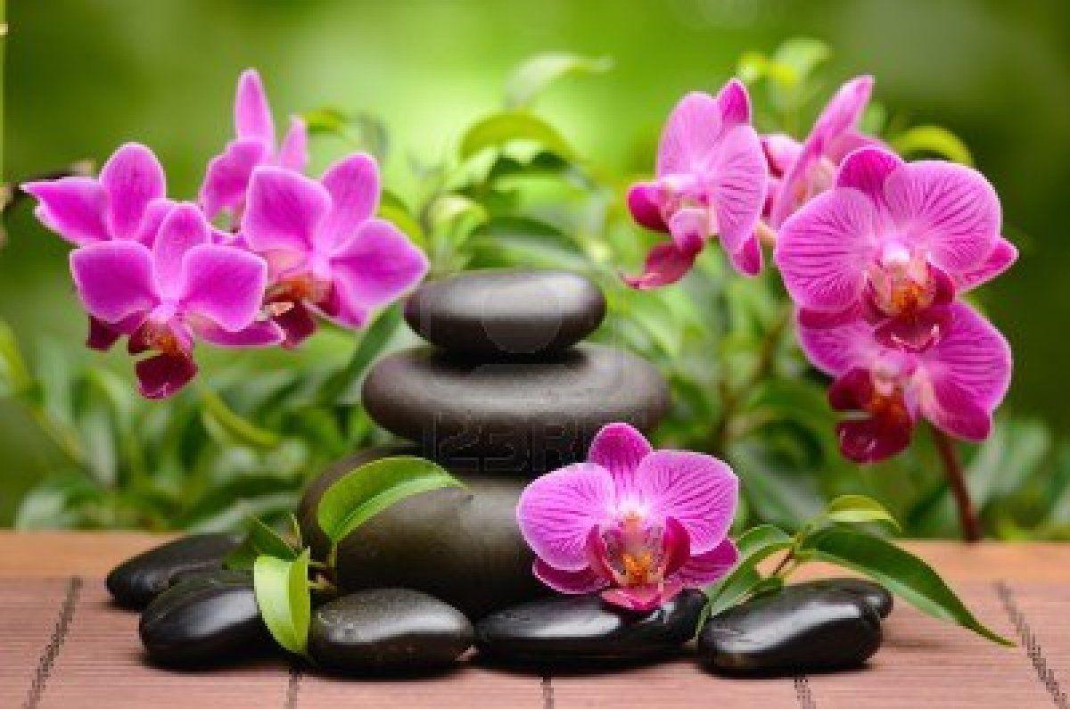 zen basalt stones and bamboo on the wood | Zen | Pinterest | Zen ...